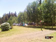 CampingLos Radales